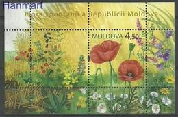 Moldova 2009 Mi Bl 46 MNH ( ZE4 MOLbl46dav14E ) - Planten