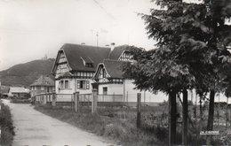 SCHERWILLER-Cp Glacée-Rue Du Nord Et Ruine De L'Ortenbourg - France