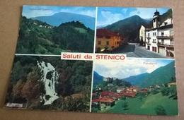 SALUTI DA STENICO (123) - Saluti Da.../ Gruss Aus...