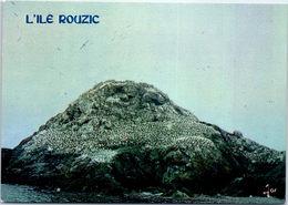 22 ILE ROUZIC - Réserve D'oiseaux - France