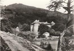 Ardèche : SAINT-PIERREVILLE : Chateau De La Tour ( C.p.s.m.- M. - Photo Vérit. - Grand Format ) - France