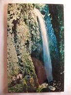 Carte Postale Australie - Minnamurra Falls -Waterfall Of 160 Feet  ( Petit Format Couleur Non Circulée ) - Australie