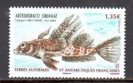 TAAF - 2011 - Poisson : Artedidraco Orianae ** - Neufs