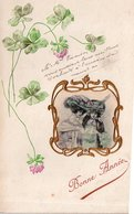 FLEURS (gauffrée) - Fleurs