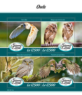 Sierra Leone. 2019 Owls. (0113a)  OFFICIAL ISSUE - Owls