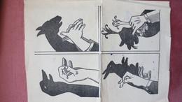 Ancienne Page D'OMBRES CHINOISES - Vieux Papiers