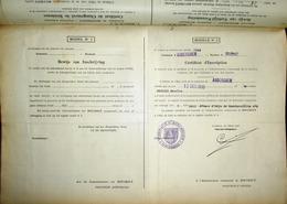 1930 GEMEENTEBOEK BOUCHOUT * 238 BEWIJZEN VERBLIJF VERANDERING INWONERS + BEWIJS INSCHRIJVING Marcofilie !! - Genealogie - Documents Historiques