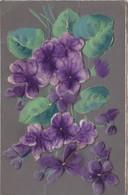 Cpa 2 Scans Superbe Fantaisie à Gros Relief Gaufré Décor De Violettes 1909 - Fleurs