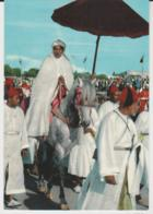 Postcard - Sa Majeste Hassan 2nd - Unused Very Good - Cartes Postales