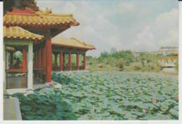 Postcard - Chinese Garden - Yu Hwa Yuan Jurong Town, Singapore No..4 - Unused Very Good - Cartes Postales