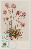 Jersey Carte Maximum 1972 Fleurs Sauvages 56 - Jersey