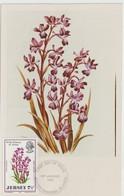 Jersey Carte Maximum 1972 Fleurs Sauvages 57 - Jersey