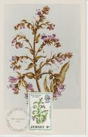 Jersey Carte Maximum 1972 Fleurs Sauvages 58 - Jersey
