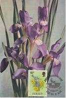 Jersey Carte Maximum 1974 Fleurs Iris 92 - Jersey