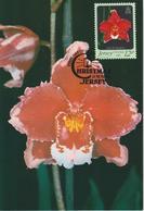 Jersey Carte Maximum 1984 Orchidées 335 - Jersey