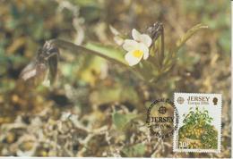 Jersey Carte Maximum 1986 Europa Fleurs Sauvages 372 - Jersey
