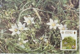 Jersey Carte Maximum 1986 Europa Fleurs Sauvages 374 - Jersey