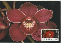 Jersey Carte Maximum 1988 Orchidées 419 - Jersey