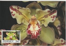Jersey Carte Maximum 1988 Orchidées 423 - Jersey