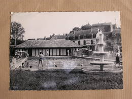 SPONTIN Le Bassin De Natation Animée  Province Namur België Belgique Carte Postale Postcard - Yvoir