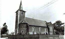 LIERNU   L' église.  Carte Photo - Eghezée
