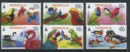 Mongolia 2012 Fauna, Birds, Parrots, Ducks - Mongolie