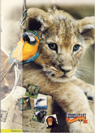 Zoosafari - Anno 2002 - Folder - 1946-.. République