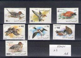 Yemen. Oiseaux - Yémen