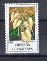 Grenade. Brassavola Cordata - Grenade (1974-...)