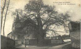 LIERNU   Le Gros Chêne - Eghezée