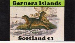 BERNERA ISLAND SCOTLAND 1982 / Magnifique Petit Bloc Dentelé - Preservare Le Regioni Polari E Ghiacciai