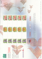 Thailand 2000 Bangkok Stamp Exhibition, Orchid, Orchids, Sheet For Personalized Stamp, MNH**, A4 Size - Thaïlande