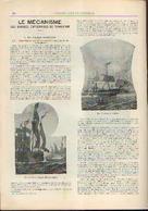 « Le Voyage Maritime – Fonctionnement D'une Société Importante De Navigation » Partie Complète D'un Article Extrait --> - Bateaux