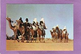 NIGER Caravane De La Région D'INCAL - Niger