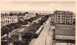 CP- TUNIS - Avenue Jules Ferry-- - Tunisie