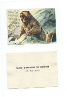 Ours Des Cavernes Chromo De La Caisse D'Épargne De Limoges 1960s TB 80 X 55 Mm - Autres