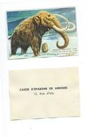 MAMMOUTH La Faune Terrestre Chromo De La Caisse D'Épargne De Limoges 1960s TB 80 X 55 Mm - Autres