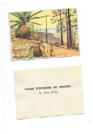 La Flore Terrestre Au Jurassique Chromo De La Caisse D'Épargne De Limoges 1960s TB 80 X 55 Mm - Autres
