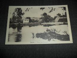 Assche  Asse   Vijver Van Roobaert  Pêche à La Ligne  Lijnvissen - Asse