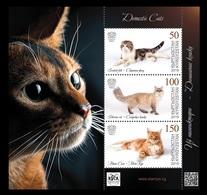 Kyrgyzstan (KEP) 2019 Mih. 125/27 (Bl.35) Fauna. Domestic Cats MNH ** - Kirghizistan