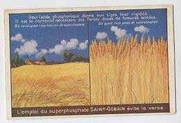 L'emploi Du Superphosphate SAINT GOBAIN évite La Verse - Pubblicitari