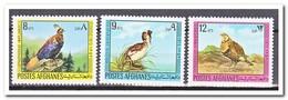 Afghanistan 1973, Postfris MNH, Birds - Afghanistan