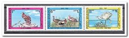 Afghanistan 1974, Postfris MNH, Birds - Afghanistan