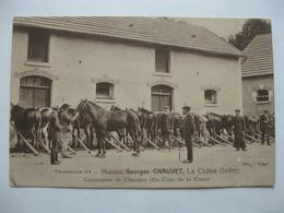 Cpa  La Châtre -  Maison Georges Chauvet , Commerce De Chevaux . - La Chatre