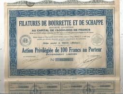 Action Privilégiée De 100 Francs ,FILATURES DE BOURRETTE ET DE SCHAPPE ,Thizy , Rhône, 1934 , Frais Fr 1.95e - Actions & Titres