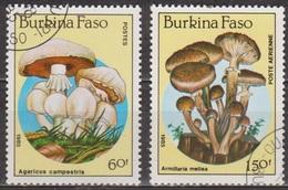 Flore - Champignons - BURKINA FASO - Agaricus Campestris -  Armarilla Mellera - N° 679 + PA 311 - 1985 - Burkina Faso (1984-...)