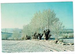 Vlaamse Ardennen, Vijf Seizoenen, Sneeuw Te Nukerke (pk55687) - Maarkedal