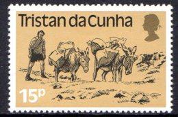 1983, Tristan Da Cunha, Ane, Mule, Transport - Tristan Da Cunha