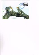TBC-POST : Oiseaux - Carte Maximum 2014. - Birds