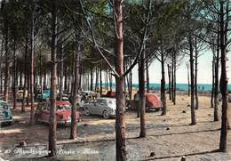 """07796 """"MONDRAGONE (CE) - PINETA - MARE"""" ANIMATA, AUTO FIAT ANNI '50 CART. ORIG. SPED. 1964 - Altre Città"""